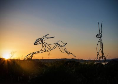 Steel Hares by Geoff Forrest